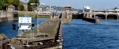Ballard Locks (Hiram H. Chittenden Locks)